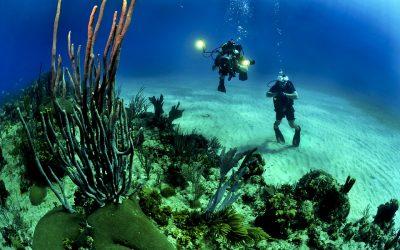 Los mejores lugares para el buceo en la India